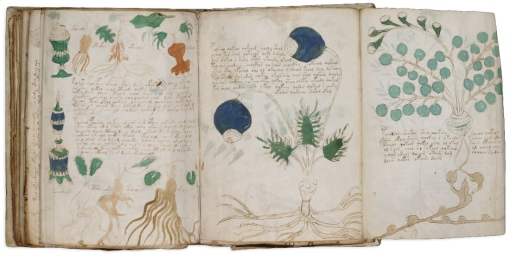 One of the most mysterious books in the world, The Voynich manuscript has been complete gibberish from start to finish, until a professor cracked the code for some 10 words and 14 symbols in the text.