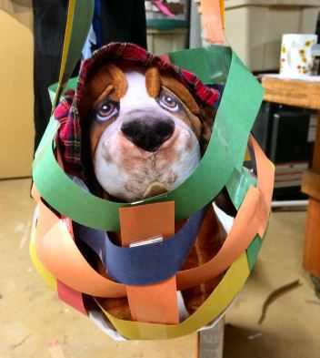 Pooch in basket